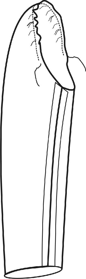 Как вшить рукав в пройму - припосаживание рукава по окату